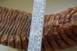 Зуб Мамонта. Полный фрагмент. Вес 6,1кг photo 9