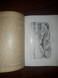 1900 Вымершие чудовища photo 9