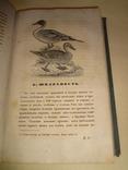 1857 Охота Ружейный Охотник с политипажами