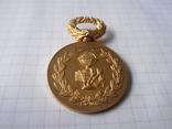 Медаль 1913г Франция, фото №6