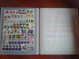 Альбом+1062 марки+62 блока___№10 photo 17
