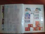 Альбом+728 марок**___№12 photo 4