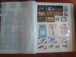 Альбом+728 марок**___№12 photo 12