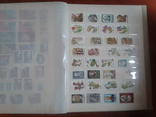 Альбом+728 марок**___№12 photo 24