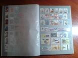 Альбом+451 марка+15 блоков без СССР photo 10