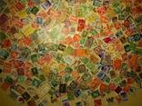 Интересный лот марок. 500 шт. photo 10