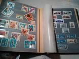 Альбом с марками photo 9