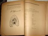 Евреинов Н. Что такое театр. Книжка для детей. Петербург, 1921 год, фото №12