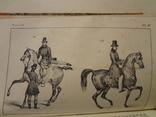 1834 Кавалерия Лошади на французском