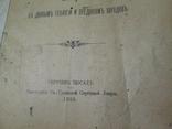 Библейское повествование о потопе.1910 год ., фото №6