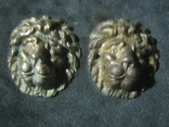 Добрые львы.Пара., фото №3