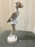 Балерина Копия photo 3