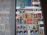 Два больших альбома с чистыми марками СССР /свыше 2200 штук/ 1950-е - 1980-е г.г. photo 6