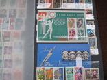 Два больших альбома с чистыми марками СССР /свыше 2200 штук/ 1950-е - 1980-е г.г. photo 8