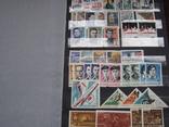 Два больших альбома с чистыми марками СССР /свыше 2200 штук/ 1950-е - 1980-е г.г. photo 12