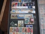 Два больших альбома с чистыми марками СССР /свыше 2200 штук/ 1950-е - 1980-е г.г. photo 13