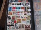 Два больших альбома с чистыми марками СССР /свыше 2200 штук/ 1950-е - 1980-е г.г. photo 15