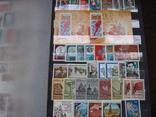 Два больших альбома с чистыми марками СССР /свыше 2200 штук/ 1950-е - 1980-е г.г. photo 16