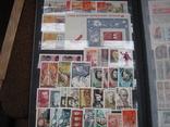 Два больших альбома с чистыми марками СССР /свыше 2200 штук/ 1950-е - 1980-е г.г. photo 17