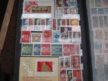 Два больших альбома с чистыми марками СССР /свыше 2200 штук/ 1950-е - 1980-е г.г. photo 19