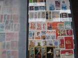 Два больших альбома с чистыми марками СССР /свыше 2200 штук/ 1950-е - 1980-е г.г. photo 20