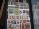 Два больших альбома с чистыми марками СССР /свыше 2200 штук/ 1950-е - 1980-е г.г. photo 21