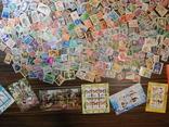 Лот марок с блоками. photo 10