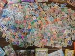 Лот марок с блоками. photo 11