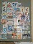 Альбом марок (номинальное количество 650 шт) photo 3