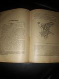 1905 Учебник повивального искусства photo 6