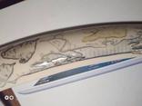Клык моржа 352 грамма photo 4