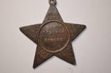 Делегату от Красной Пресни. 1921г. photo 3