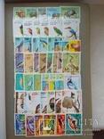 Альбом з марками.1000 шт. photo 2