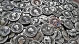 Коллекция Римских Антонианов, Денариев, Силикв 350 штук, 936 гр. photo 28
