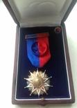 Орден Бернардо О'Хиггинса (офицер)