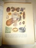 Занимательная Геохимия с цветными иллюстрациями