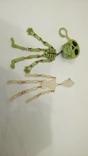 Два скелета , пластик . можно в авто ) . брелоки, фото №5