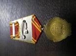 СССР.Орден Ленина № 254786 с доком photo 2
