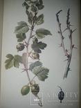 1912 - 6 книг по сельхоз хозяйству