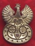 КОКАРДА офіцерська Польща до 1939р