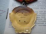 Орден Ленина № 199361 +Документ (1952 г) photo 9