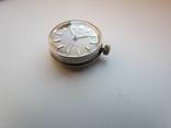 Часы Roamer Anfibio, фото №11