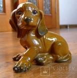 Собачка Rosenthal с этикеткой, подписная, автор G Küspert, фото №7
