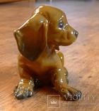 Собачка Rosenthal с этикеткой, подписная, автор G Küspert, фото №8