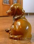 Собачка Rosenthal с этикеткой, подписная, автор G Küspert, фото №10