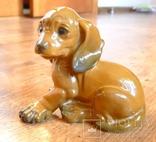 Собачка Rosenthal с этикеткой, подписная, автор G Küspert, фото №15