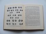 Русская монетная система. И. Г. Спасский. Третье издание., фото №16