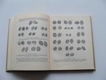 Русская монетная система. И. Г. Спасский. Третье издание., фото №18