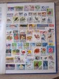 Альбом з марками 900 шт. photo 7