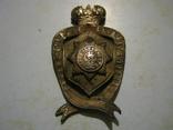 Знак Сводно-гвардейский батальон обр.1883 г. photo 1